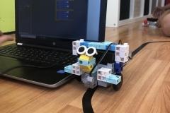 1_robotikaTabor2020nyar-13